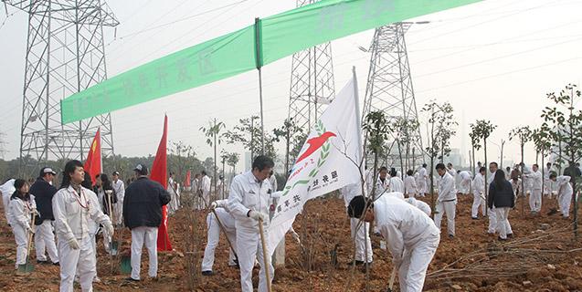 開發區植(zhi)樹